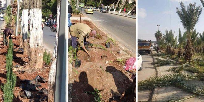 صيانة وتأهيل عدد من الحدائق والمنصفات ضمن مدينة حمص